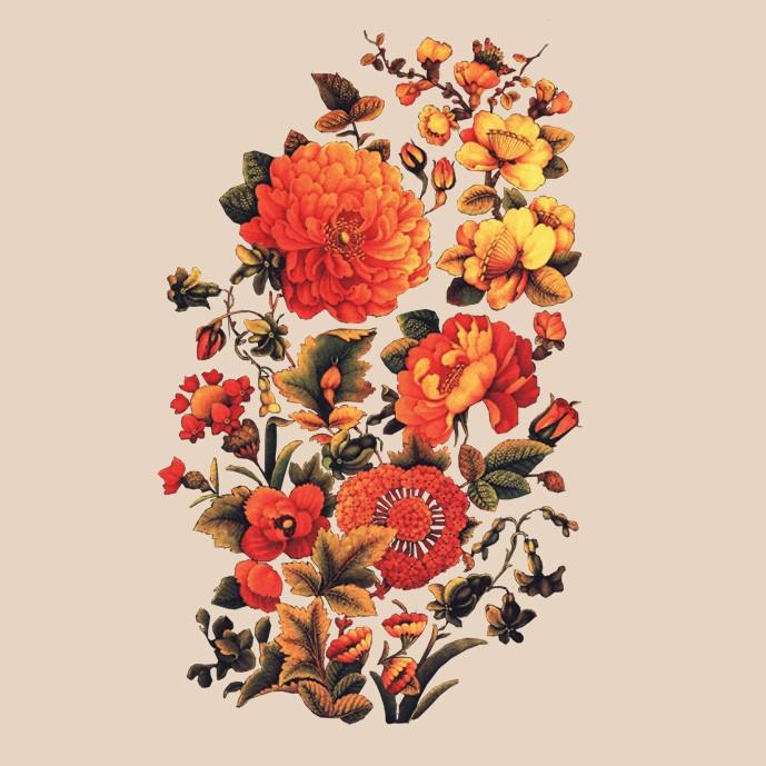دانلود تصویر گل و مرغ اصیل ایرانی