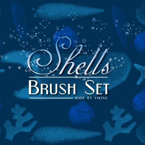 shells-brushes-by-viking