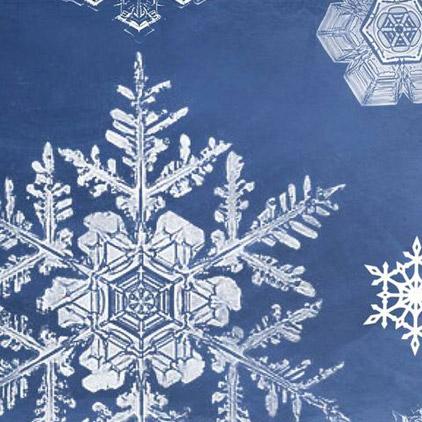 snowflake-brushes