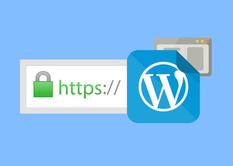 ssl-wordpress