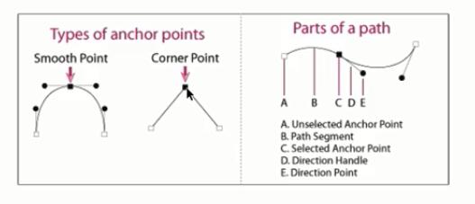 انواع anchor point و نقاط مختلف آن