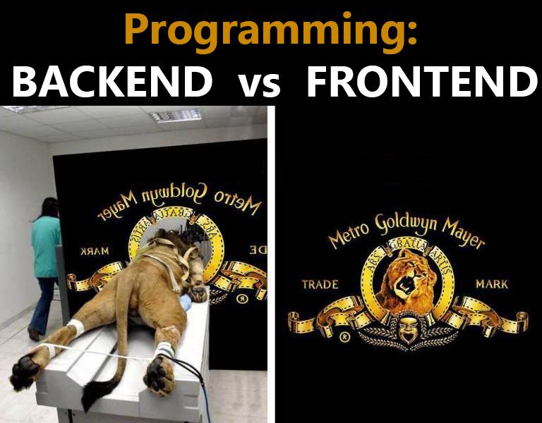 شوخی توسعه دهندگان در رابطه با تمایز Front-end از Back-end